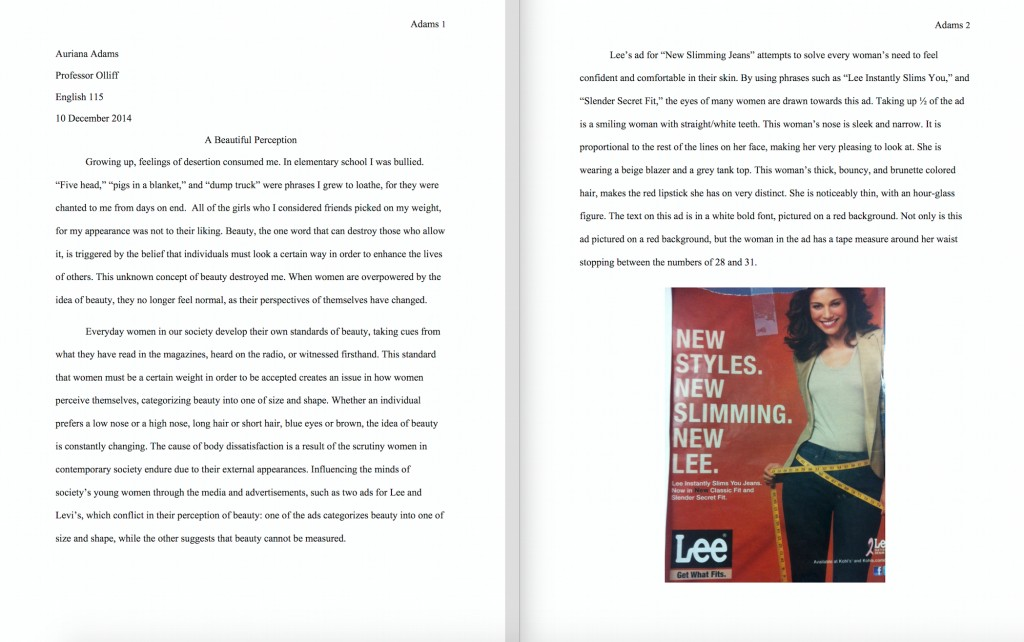 Image of student essay that opens up as a pdf file.